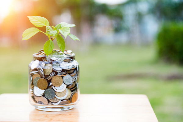 Jar of coins with a plant growing out of it