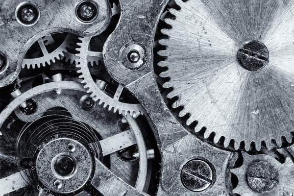 The gears of a watch